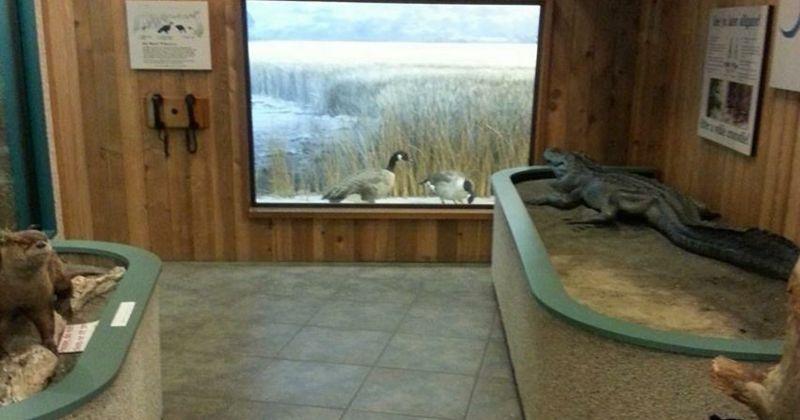 Visitor Center and interactive interpretation and gift shop at St. Marks National Wildlife Refuge