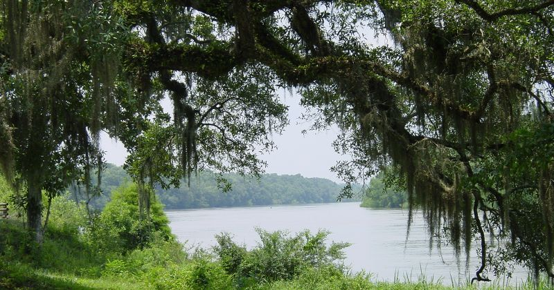 Apalachicola River from Fort Gadsden
