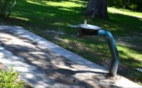 Drinking fountain at Wakulla Springs State Park