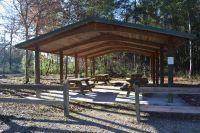 Wakulla State Forest - roadside picnic pavilion