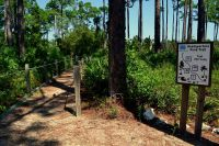 headquarter's accessible trail