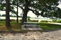 St. Marks National Wildlife Refuge - picnic area