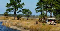 Tram on nature tour at St. Marks National Wildlife Refuge