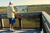 Marsh boardwalk with informative display at Bald Point State Park