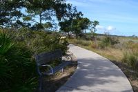 Marsh boardwalk with bench at Bald Point State Park