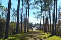 Dwarf Cypress Boardwalk - parking area and boardwalk access