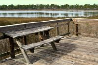 Dr. Julian G. Bruce St. George Island State Park - Viewing platform on East Slough