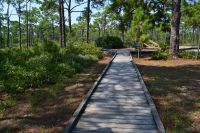 Dr. Julian G. Bruce St. George Island State Park - trail boardwalk from camping area